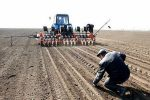 Посівна-2019: в Україні розпочато посів ярих зернових культур