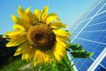 На Херсонщині молочна ферма продає сонячну електроенергію