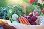 В Україні дешевшають овочі «борщового набору» нового врожаю