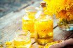 У Раді зареєстрували законопроект щодо захисту бджільництва