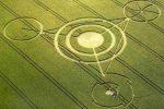 Послання українського фермера владі виявилося крутішим малюнків на полях Англії