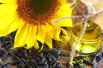 Україна нарощує темпи виробництва соняшникової олії